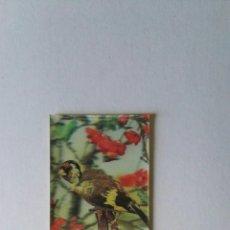 Pegatinas de colección: ANTIGUA PEGATINA PANRICO HOLOGRAMA TRANSPLASTIC N 30 JILGUERO. Lote 165415449