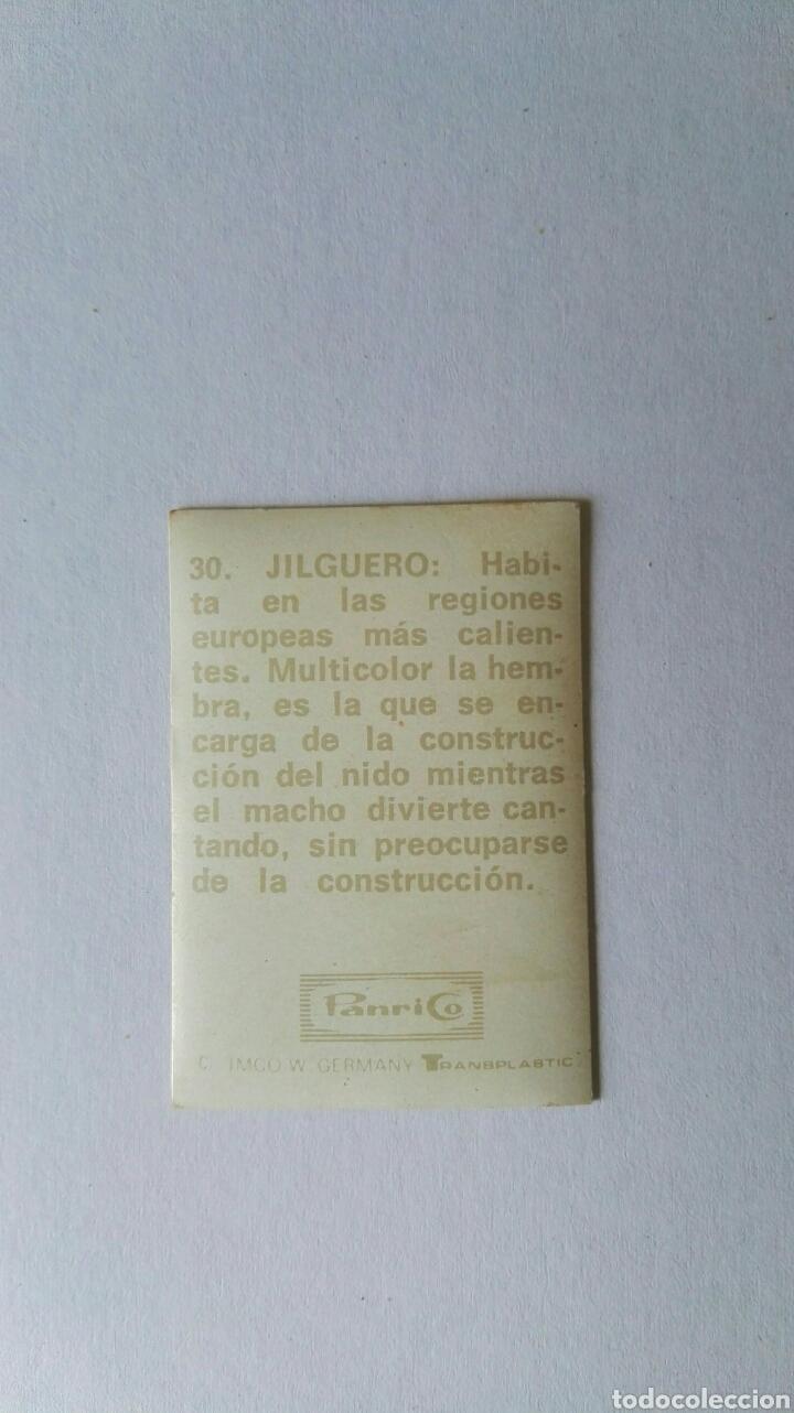 Pegatinas de colección: Antigua pegatina panrico holograma transplastic n 30 jilguero - Foto 2 - 165415449