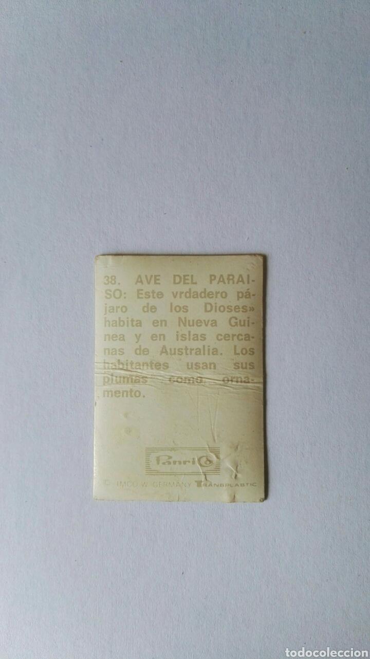 Pegatinas de colección: Antigua pegatina panrico holograma transplastic n 38 ave del paraíso - Foto 2 - 165415632