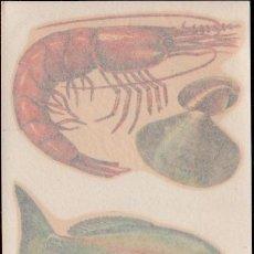 Pegatinas de colección: C17-5-119 CONTROL F-5-65 CALCOMANIAS ORTEGA SERIE PESCADOS Y MARISCOS SERIE D - D Nº 119.. Lote 173613989