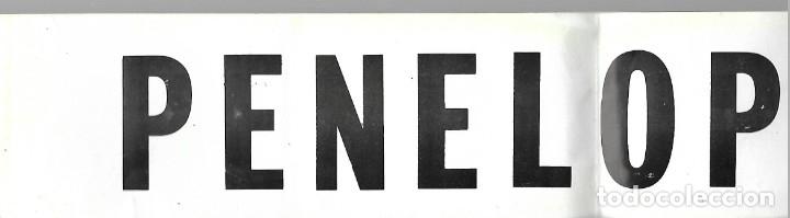 Pegatinas de colección: DISCOTECA PENOLOPE DE BENIDORM AÑOS 70-80 BUEN ESTADO . PEGATINA PARA LUNA TRASERA - Foto 2 - 177013767