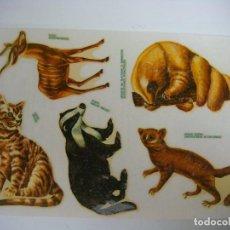 Pegatinas de colección: CALCOMANIAS ORTEGA AÑOS 60-70 ANIMALES.. Lote 192091873
