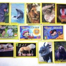 Pegatinas de colección: LOTE DE 12 CROMOS CUCCIOLOTTI ANIMALITOS CARTAS PEGATINAS ANIMALES INFANTIL PANINI. Lote 211623502