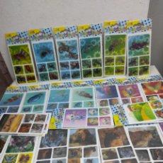 Pegatinas de colección: SEGUNDO LOTE DE PEGATINAS, DIFERENTE AL PRIMERO. Lote 248596670
