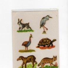 Pegatinas de colección: ADHESIVO / PEGATINA - CALCOMANIAS ORTEGA - HOJA CON 6 ANIMALES -. Lote 288291523