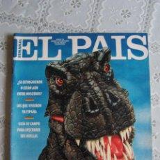 Coleccionismo de Periódico El País: EL PAÍS SEMANAL Nº 135. 19 DE SEPTIEMBRE DE 1993. CONTIENE POSTER DE DINOSAURIOS.. Lote 87079232