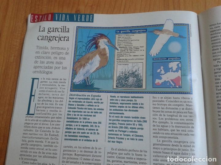 Coleccionismo de Periódico El País: EL PAIS SEMANAL nº 158 - 27/02/94 - Victor Ullate, Nicolás Redondo, Gloria Estefan, Michael Jackson - Foto 12 - 99863923