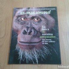 Coleccionismo de Periódico El País: EL PAIS SEMANAL Nº 1133 - 14/06/98 - HUELLA HUMANA, ATÚN ALMADRABA BARBATE, LUCÍA JIMÉNEZ, MAURA. Lote 101576095
