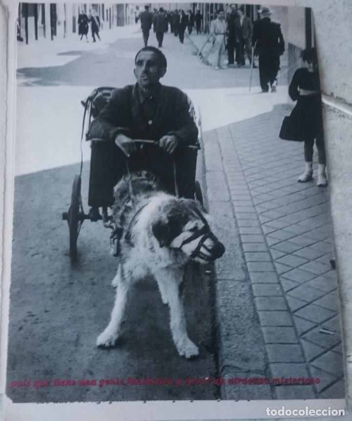 Coleccionismo de Periódico El País: Inge Morath en España. El largo viaje. (El Pais semanal circa 1995) - Foto 3 - 131666614