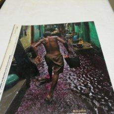 Coleccionismo de Periódico El País: EL PAÍS SEMANAL, N. 1634,AÑO 2008. Lote 158898190