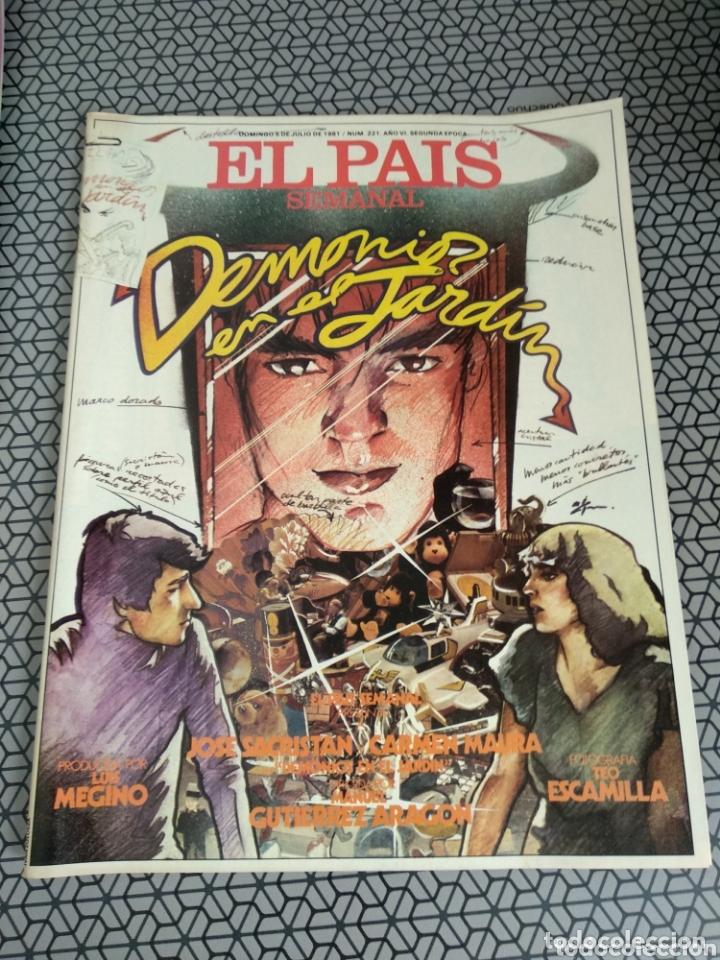 Coleccionismo de Periódico El País: Lote 19 revistas El País Semanal 1981 - Foto 20 - 174029685