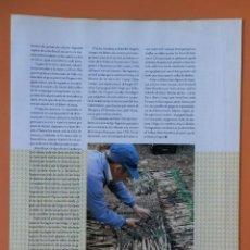 Coleccionismo Periódico La Vanguardia: TOT CATALUNYA. EL LLIBRE PER CONÈIXER EL PAÍS COMARCA A COMARCA. DE LA PG 161 A LA 176 (COMARQUES DE. Lote 44079463