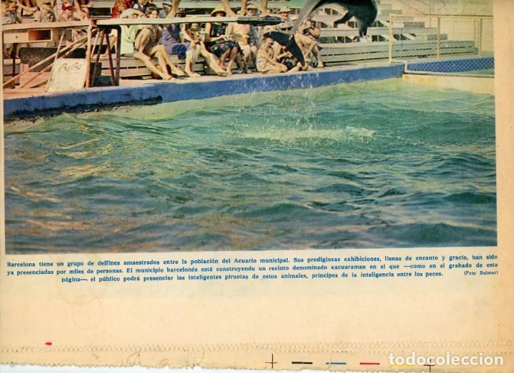Coleccionismo Periódico La Vanguardia: La Vanguardia Española. 26/12/1966 Suplemento Acuario de Barcelona. Inst. Investigaciones Pesqueras - Foto 2 - 195322180