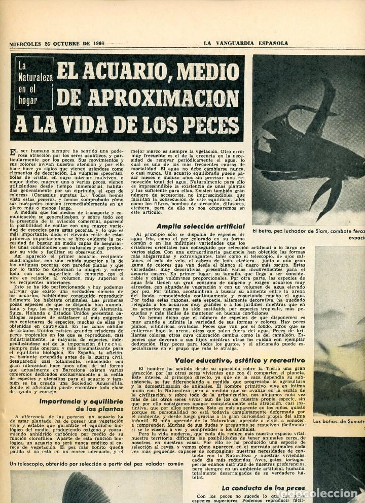 Coleccionismo Periódico La Vanguardia: La Vanguardia Española. 26/12/1966 Suplemento Acuario de Barcelona. Inst. Investigaciones Pesqueras - Foto 5 - 195322180