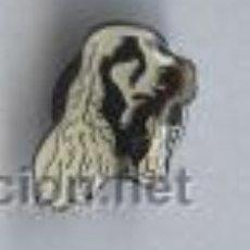 Pins de colección: PIN - PERRO. Lote 5917000