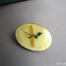Pins de colección: PIN UNIÓN MUSICAL CREVILLENT (VALENCIA) 1929 2004. CON IMPERDIBLE (NO PUA). Lote 179067013