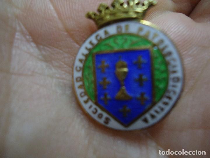 Pins de colección: JOYERIA MALDE PIN DE SOLAPA DE Sociedad Gallega de Patología Digestiva CON EL ESCUDO DE GALICIA - Foto 2 - 192910656