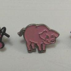 Pins de colección: LOTE PINS DE CERDOS. Lote 194233878