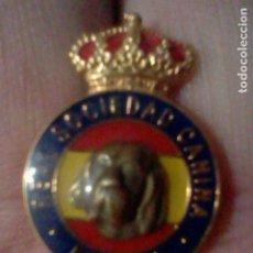 Pins de colección: PERRO REAL SOCIEDAD CANINA ESPAÑA PIN PINCHO LOGO 2,5 CMS ALTO RETRO VINTAGE. Lote 221829362