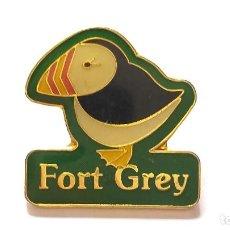 Pins de colección: PIN DE TUCAN. LETRAS DE FORT GREY. INGLATERRA.. Lote 230220595