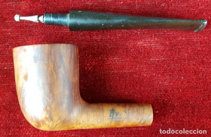Pipas de fumar: EVEREST. BRIAR 66. PIPA PARA FUMAR. MADERA DE BREZO. CIRCA 1970 - Foto 4 - 100590227