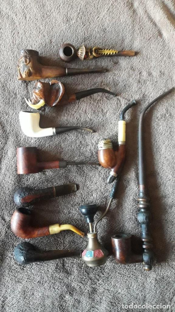 LOTE DE 11 PIPAS, CABEZA DE ELEFANTE, CABEZA HOMBRE ORIENTAL, ETNICA, SAVINELLI LOLITA, MASTERLY, BR (Coleccionismo - Objetos para Fumar - Pipas)