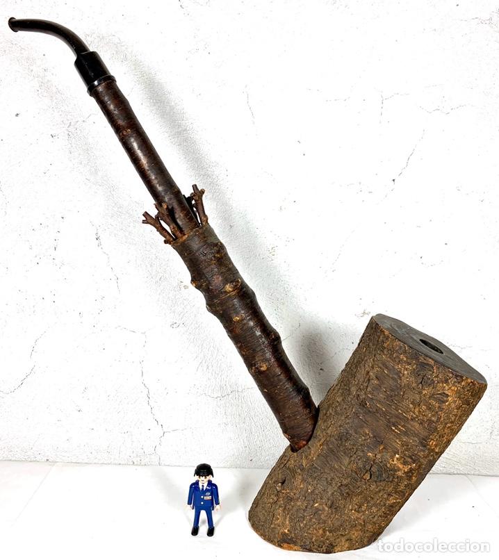 Pipas de fumar: Enorme pipa de fumar marca ROPP con fotografía antigua del dueño fumando - gran pieza museo - Foto 3 - 194155508