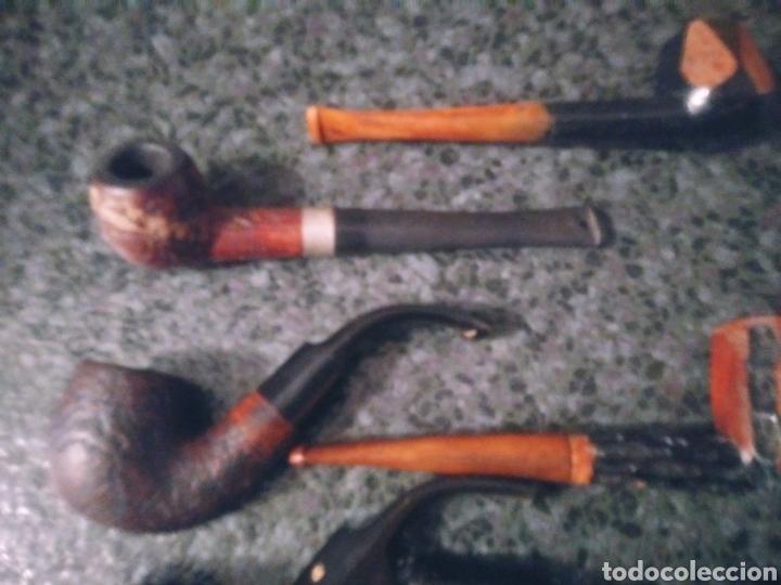 Pipas de fumar: Pipas de madera de colección. - Foto 2 - 194206281
