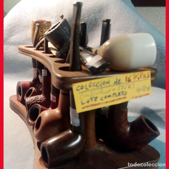 Pipas de fumar: MINI COLECC. DE 12 PIPAS DIFERENTES y VARIOS MATERIALES + PORTA PIPAS. EN BUEN USO. Individual 475 € - Foto 4 - 217809485