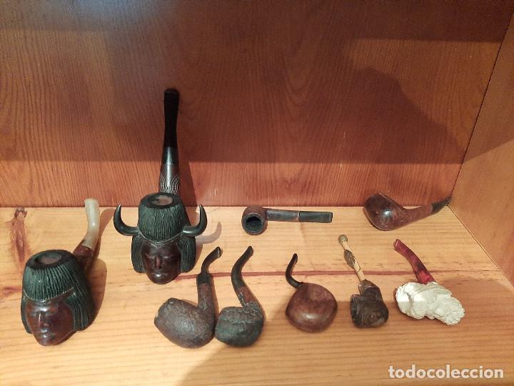 Pipas de fumar: Colección de pipas - Foto 5 - 221840528
