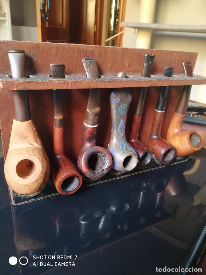 EXPOSITOR CON 7 PIPAS (Coleccionismo - Objetos para Fumar - Pipas)