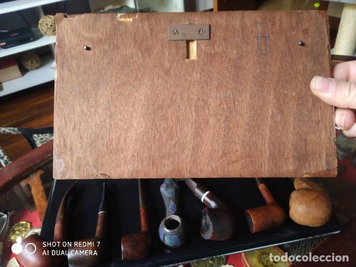 Pipas de fumar: Expositor con 7 pipas - Foto 7 - 237865500