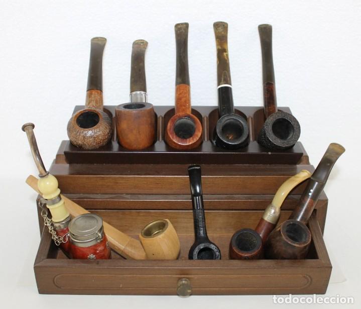 COLECCIÓN DE 10 PIPAS CON SOPORTE EXPOSITOR Y CAJÓN. DISTINTAS MARCAS Y MODELOS. (Coleccionismo - Objetos para Fumar - Pipas)