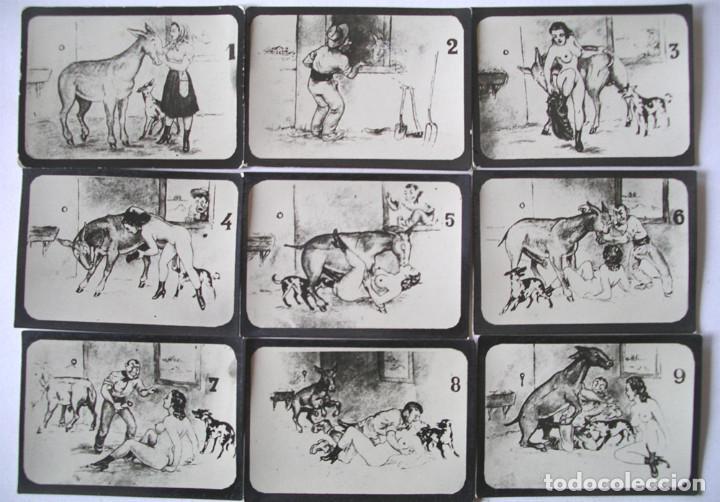 Postales: Serie completa 10 láminas Dibujos Erótico porno, originales años 20. Med 8,50 x 6 cm - Foto 2 - 136980930