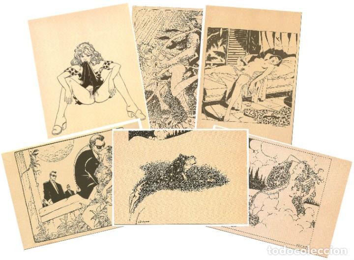 MILO MANARA - LOTE 6 POSTALES ERÓTICAS - 1990 - L´IMMAGINARIO (Coleccionismo para Adultos - Postales Temáticas - Eróticas y Pin Ups)