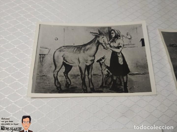 """Postales: COLECCIÓN 10 FOTOS PORNO ERÓTICAS (CROMOS NUMERADOS) """"EL BURRO"""" ZOOFILIA - AÑOS 30/40 - Foto 2 - 230803145"""