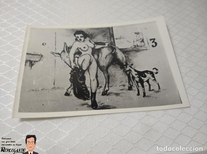 """Postales: COLECCIÓN 10 FOTOS PORNO ERÓTICAS (CROMOS NUMERADOS) """"EL BURRO"""" ZOOFILIA - AÑOS 30/40 - Foto 4 - 230803145"""