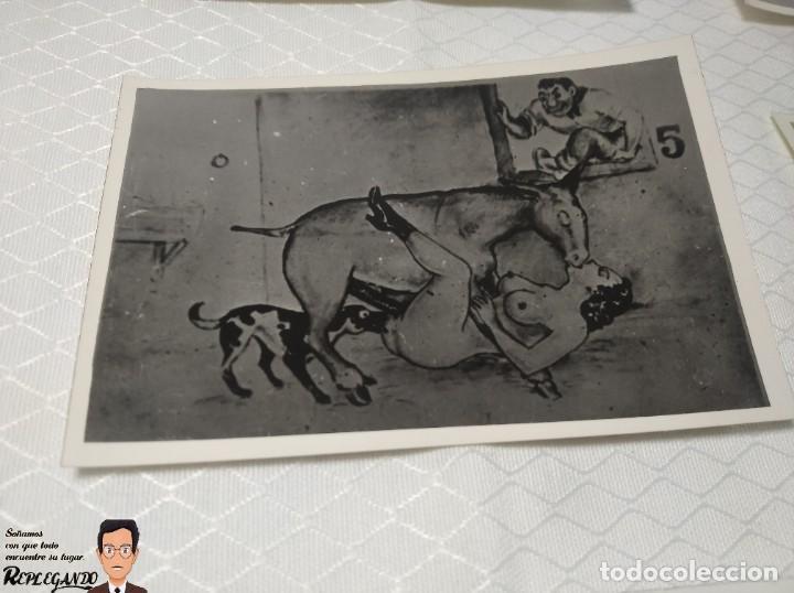 """Postales: COLECCIÓN 10 FOTOS PORNO ERÓTICAS (CROMOS NUMERADOS) """"EL BURRO"""" ZOOFILIA - AÑOS 30/40 - Foto 6 - 230803145"""