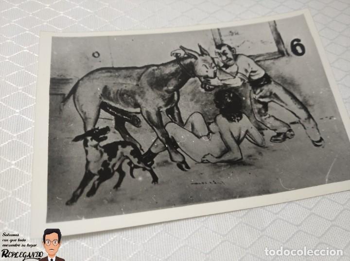 """Postales: COLECCIÓN 10 FOTOS PORNO ERÓTICAS (CROMOS NUMERADOS) """"EL BURRO"""" ZOOFILIA - AÑOS 30/40 - Foto 7 - 230803145"""