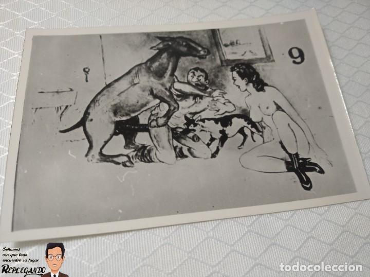"""Postales: COLECCIÓN 10 FOTOS PORNO ERÓTICAS (CROMOS NUMERADOS) """"EL BURRO"""" ZOOFILIA - AÑOS 30/40 - Foto 10 - 230803145"""