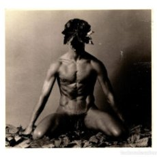 Postales: TEMÁTICA HOMOSEXUAL - ART UNLIMITED - AMSTERDAM - HANS VAN MANEN 1983 - LEAF - 150X104 - INÉDITA. Lote 243003285