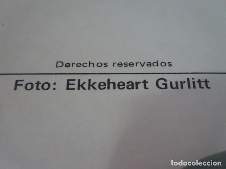 Postales: POSTAL FOTOGRÁFICA ERÓTICA, EKKEHEART GURLITT, VER FOTOS - Foto 5 - 245244695