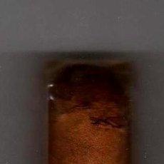 Cajas de Puros: CIGARRO PURO LOS STATOS DE LUXE HABANA PRECINTADO CON VITOLA. Lote 38914135