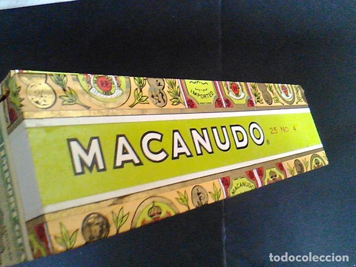 Cajas de Puros: CAJA PUROS MACANUDO MONTEGO Y CIA 25 CIGARROS EXQUISITOS Nº 4 MIDE 21,5 X 14 X 4,2 CM - Foto 3 - 70763677