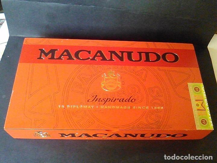 CAJA PUROS MADERA MACANUDO INSPIRADO 10 DIPLOMÁTICO (Coleccionismo - Objetos para Fumar - Cajas de Puros)