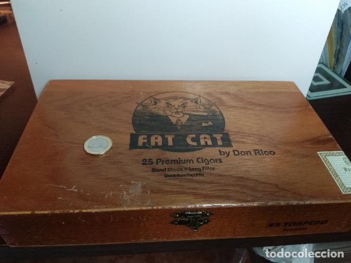 CAJA DE PUROS MADERA FAT CAT REPUBLICA DOMINICANA (Coleccionismo - Objetos para Fumar - Cajas de Puros)