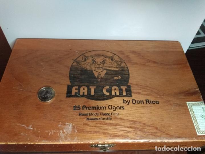 Cajas de Puros: CAJA DE PUROS MADERA FAT CAT REPUBLICA DOMINICANA - Foto 2 - 76532066