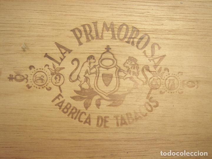 Cajas de Puros: ANTIGUA CAJA DE PUROS MADERA-LA PRIMOROSA-25 MEDIAS CORONAS -BOCETON-25 PETIT CORONAS- PURO TABACO - Foto 8 - 107350975