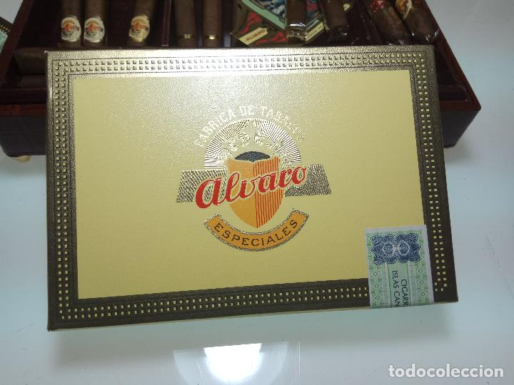 Cajas de Puros: GRAN LOTE COMPUESTO POR DOS CAJAS DE PUROS ALVARO CERRADOS, 25 SALUDOS + 25 DON ALVAROS Y MUCHO MAS - Foto 5 - 109895443