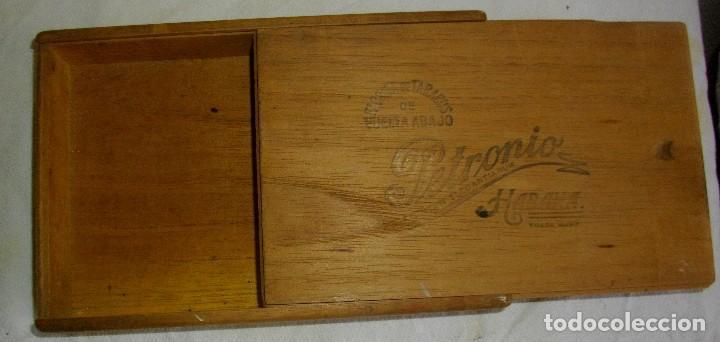 Cajas de Puros: CAJA DE PUROS HABANOS PETRONIO (VACIA) EPOCA PRE-REVOLUCION - Foto 2 - 110190395